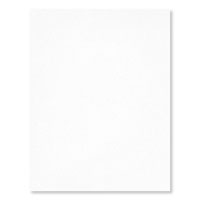 "Shimmery White 8-1/2"" X 11"" Card Stock"